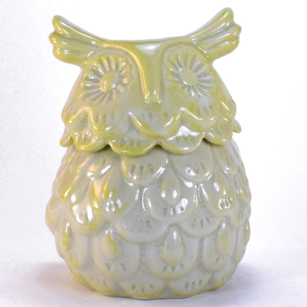 Celadon Ceramic Owl | Owl decor, owl gifts, ceramic owl box