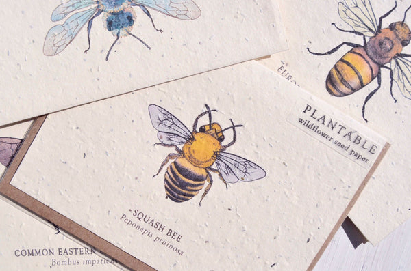 Plantable Bee Note Cards - Set of 4