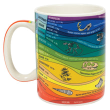 Load image into Gallery viewer, A multicolored mug with illustrations of fossils and geologic layers.