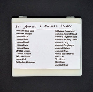 "A white piece of paper with the following text: ""25 Human and Animal Slides. Human spinal cord. Human cartilage. Human bone. Human skin. Human blood. Human liver. Human ovary. Striated muscle. Cardiac muscle. Adipose tissue. Nerve cell. Epithelium columnar. Epithelium squamous. Mammal adrenal gland. Mammal thyroid gland. Mammal pituitary gland. Mammal lung. Mammal esophagus. Mammal kidney. Mammal brain. Animal bone marrow. Plant cell. Dicot root. Dicot stem. Monocot root."