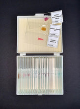 "Load image into Gallery viewer, A top-down view of a white box containing glass microscope slides. Three slides are displayed on the lid of the box, labelled as ""Animal bone marrow smear"" ""Mammal brain"" and ""Mammal kidney""."