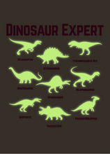 Load image into Gallery viewer, Dinosaur Expert  T-Shirt  -  Glows in the Dark!  -  (Toddler & Youth)