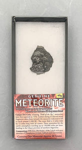 "A black meteorite in a black box with a white backgound. A piece of paper at the bottom of the box reads ""Genuine Meteorite"" with information about it's origin and composition."