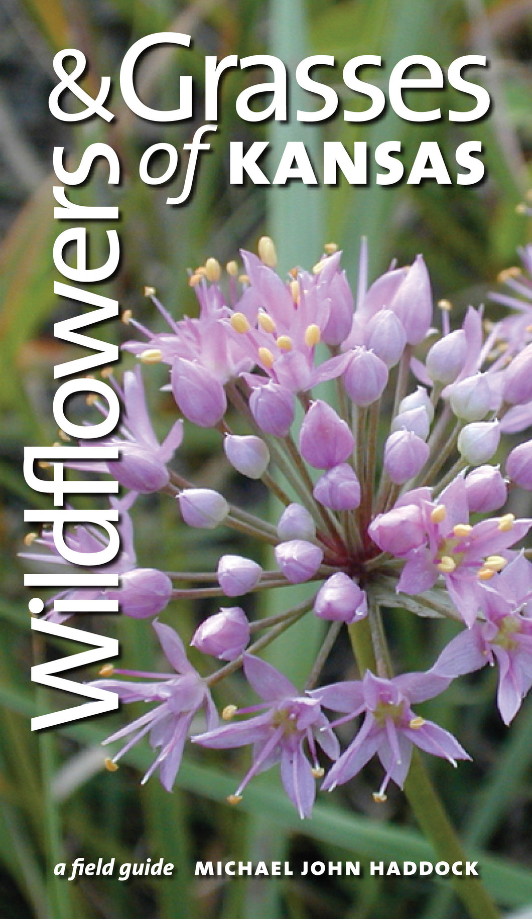 Wildflowers & Grasses of Kansas  -  A Field Guide  Book