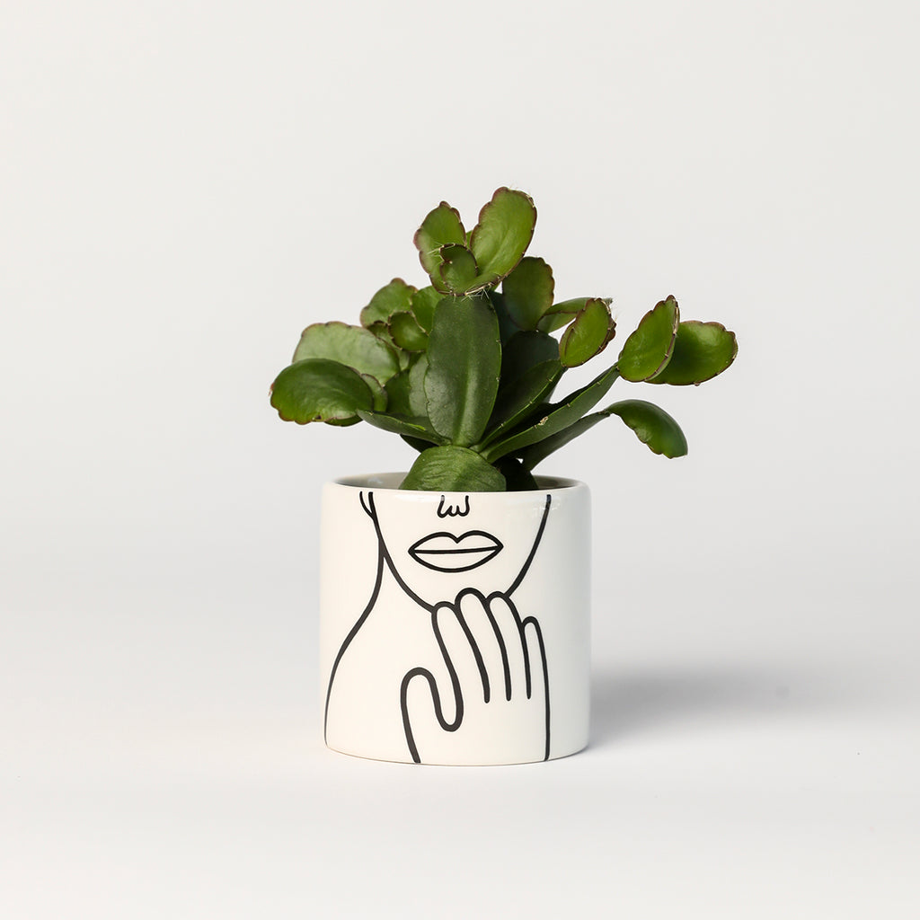 Gentle Mini Pot