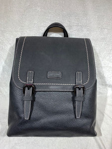 Purse Plus - Backpack