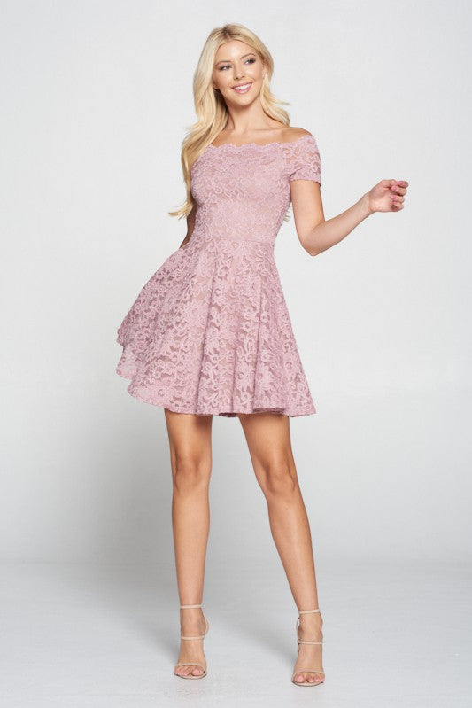 Lovely Day - Mauve Lace Dress