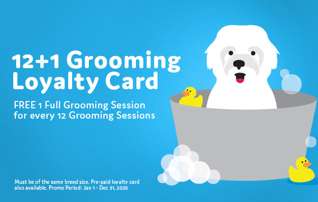 Pet Express Grooming Loyalty Program