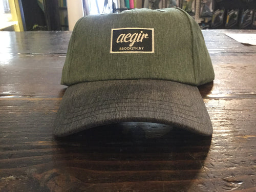 Aegir Logo Baseball Cap Distressed Green and Grey