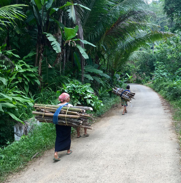 Life in rural Indonesia where Big Tree Farms works