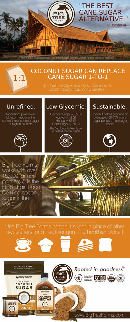 Coconut sugar infographic from Big Tree Farms