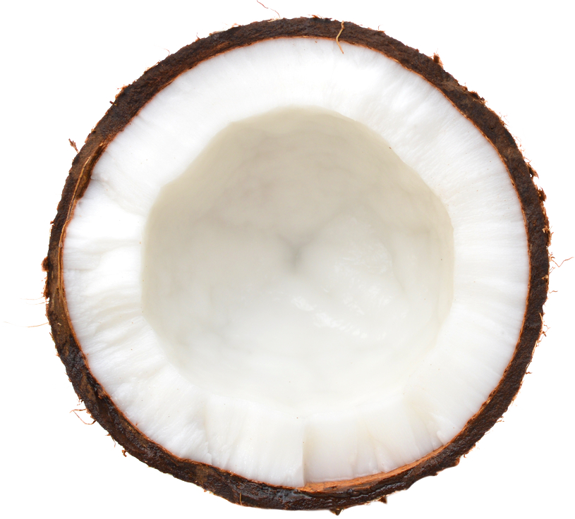 Big Tree Farms Coconut Oil