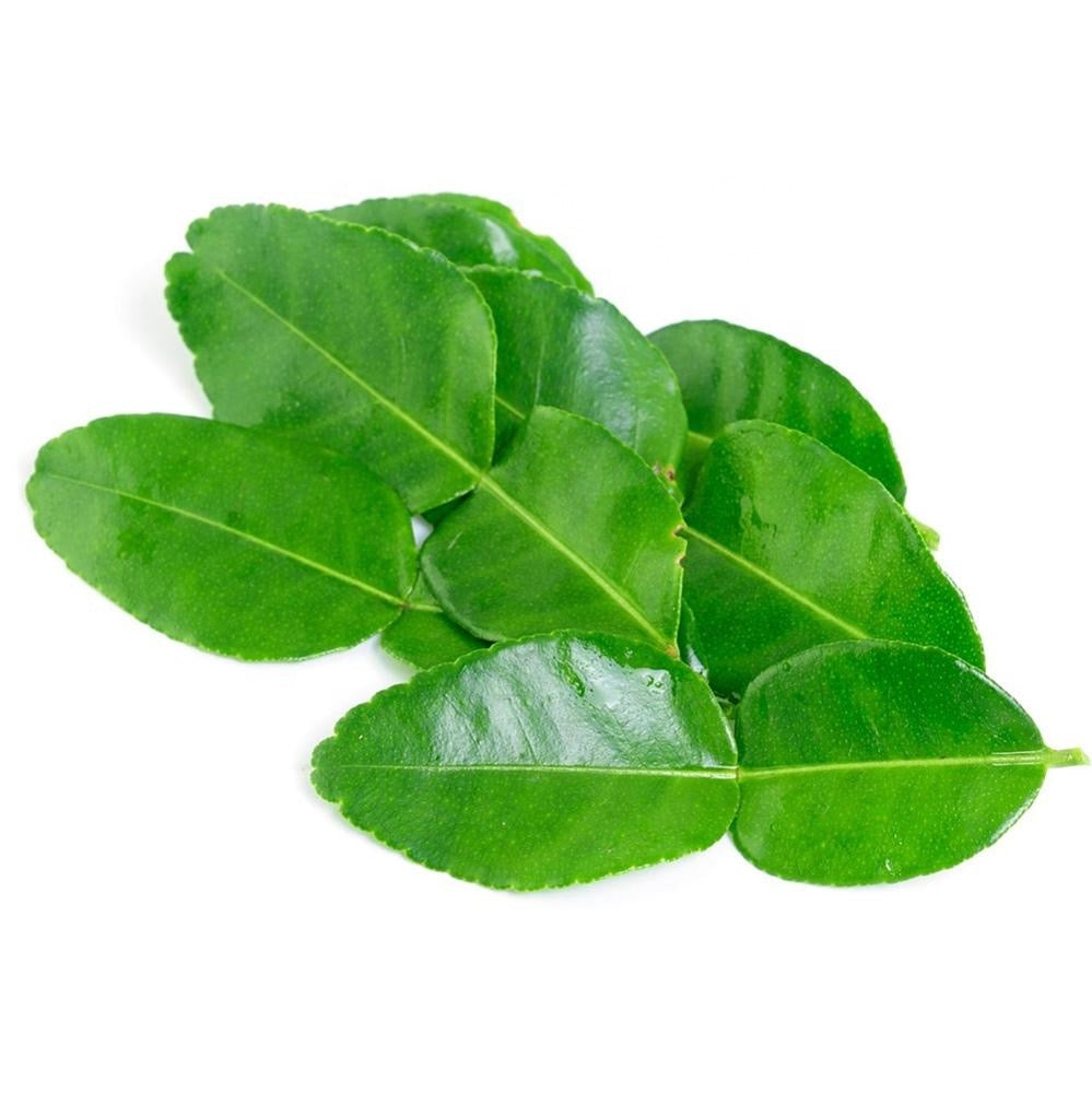 Lime Leaves Kaffir