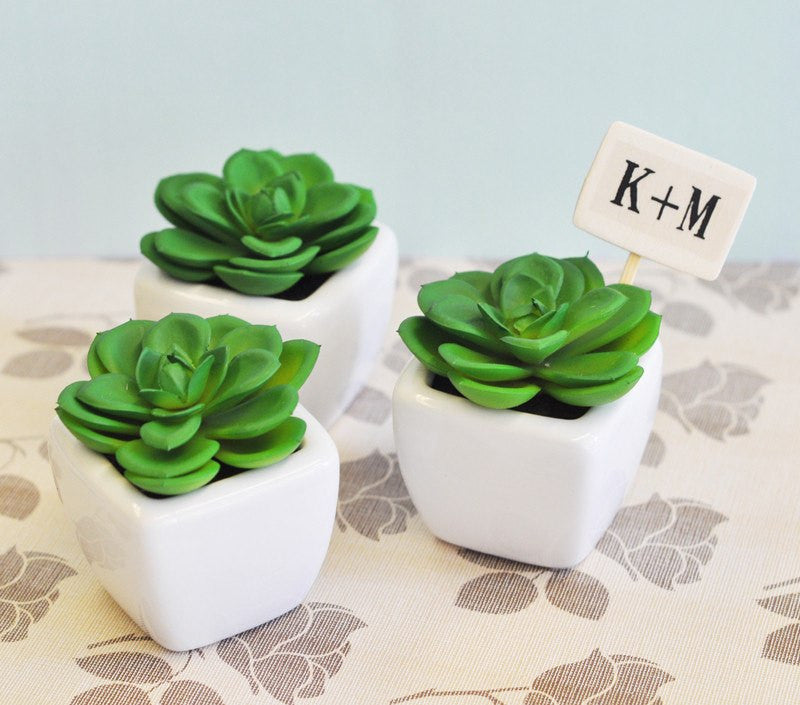 Potted Succulent Wedding Favors