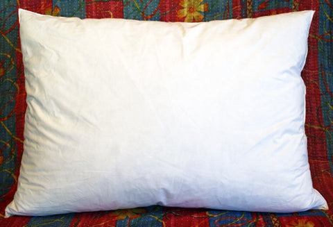 "Goose Down/Feather Pillow Insert 22"" x 15"" INT00002"