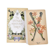 Load image into Gallery viewer, Antique Anatomy Tarot Kit