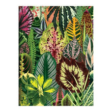 Load image into Gallery viewer, Houseplant Jungle Greeting Assortment Notecards