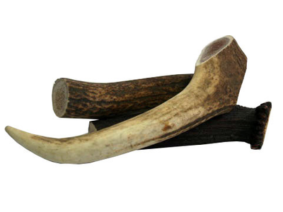 Antler Small