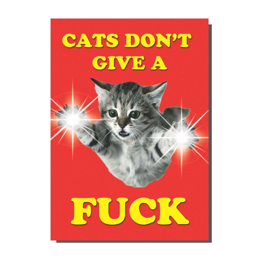 Cats don't give a fuck Card