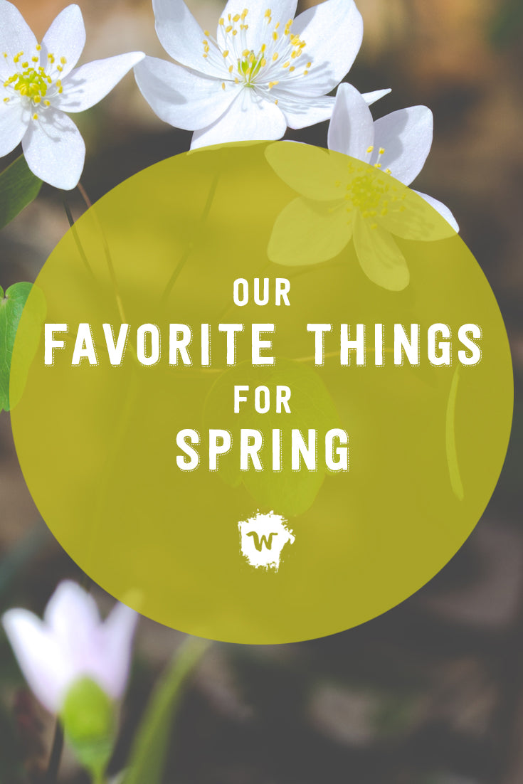 Our Spring/Summer line is about to make its debut! We wanted to let you in on a few of our little secrets for our warmer weather capsule this season that your wild ones will love.