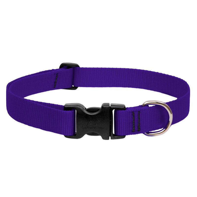 Lupine Pet - BASICS Adjustable Collar BLACK 1/2″ FOR SMALL DOGS