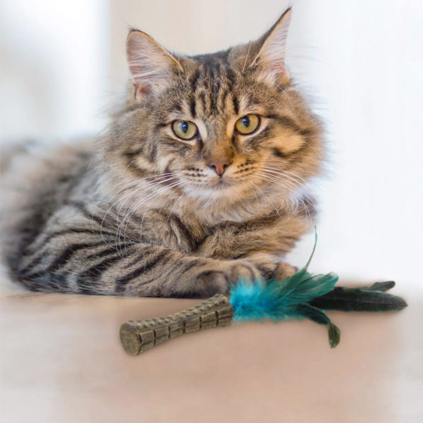 "GiGwi Catnip ""Johnny Sticks"" Cat Toy with Natural Feather"