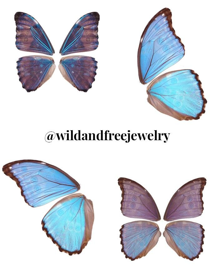Digital Download | Blue Morpho Butterfly Wings | PNG Files for Collage - Wild & Free Jewelry