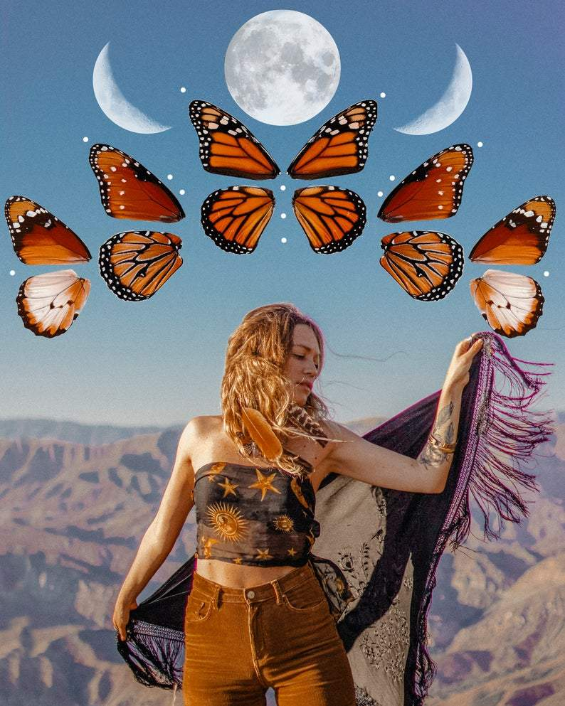 Digital Download | Butterfly Moon Phases | PNG Files for Collage - Wild & Free Jewelry