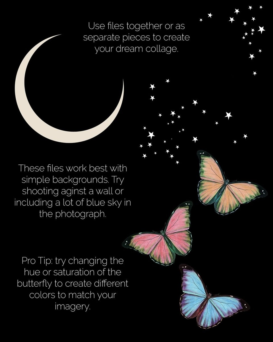 Digital Download | Butterfly & The Moon | PNG Files for Collage - Wild & Free Jewelry