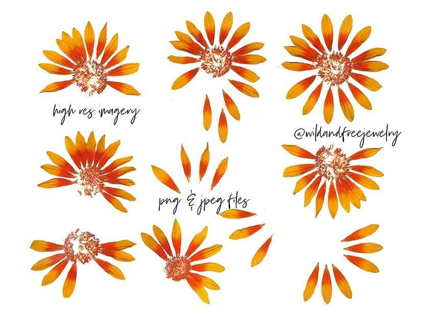 Digital Download | Pressed Flowers | PNG Files for Collage - Wild & Free Jewelry