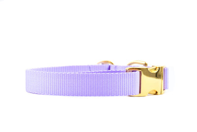 Nude Essentials Dog Collar - Lavender Danes & Divas