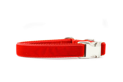 Ruby Red Velvet Collar Danes & Divas