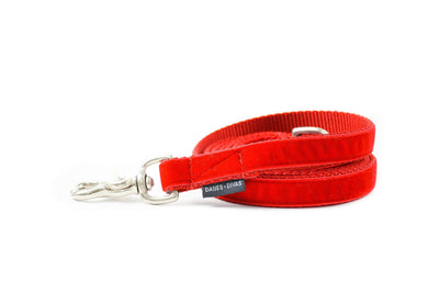Ruby Red Velvet Dog Leash Danes & Divas