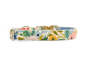 Wildwood Floral Canvas Dog Collar Danes & Divas