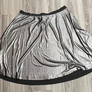 Primary Photo - BRAND: BOUTIQUE + STYLE: SKIRT COLOR: METALLIC SIZE: 2X SKU: 172-172166-74005