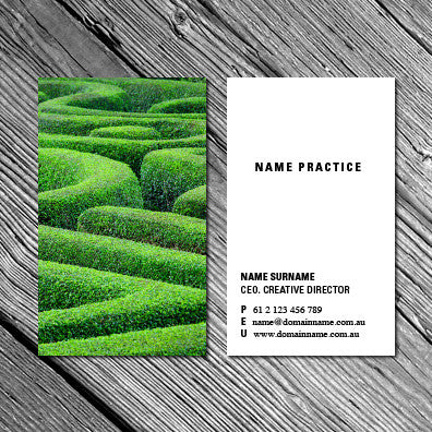 Image of business card design BF61970301-1