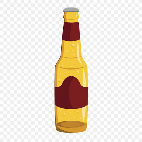 Test Beer Bottle 500ml