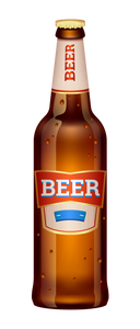 Premium Test Beer 500ml