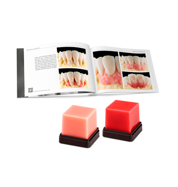 GEO EXPERT GINGIVA SET AUGUST BRUGUERA - RENFERT
