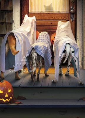 Avanti Press 3 Dogs Trick or Treating Card