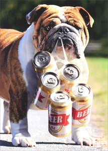 Avanti Press Dog Carries Six Pack