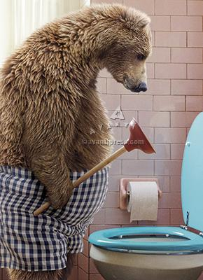 Avanti Press Bear with Toilet Plunger Card
