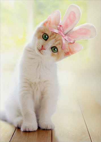 Avanti Press Kitten with Bunny Ears Card