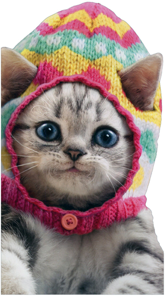 Avanti Press Kitten Wearing Knit Easter Egg Cap Little Big Funny Cute Cat Card
