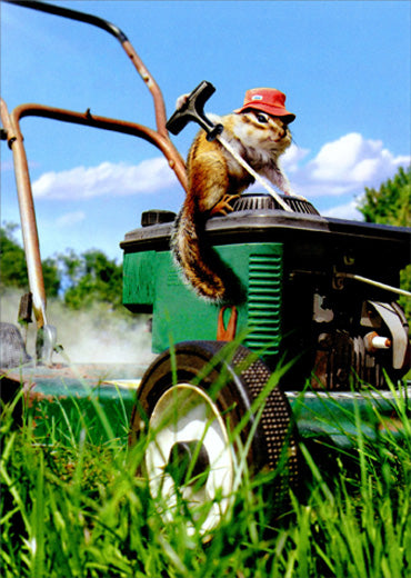 Avanti Press Chipmunk Lawnmower