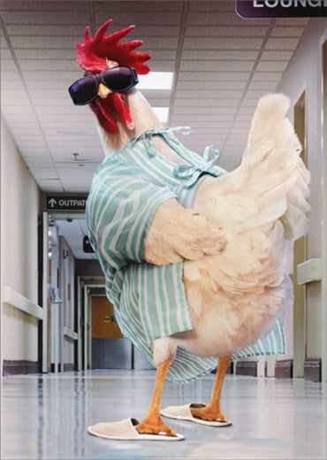 Avanti Press Rooster Hospital Gown Card