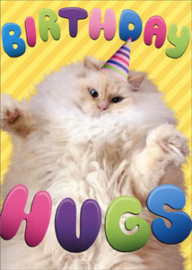 Avanti Press Birthday Hugs Cat Card