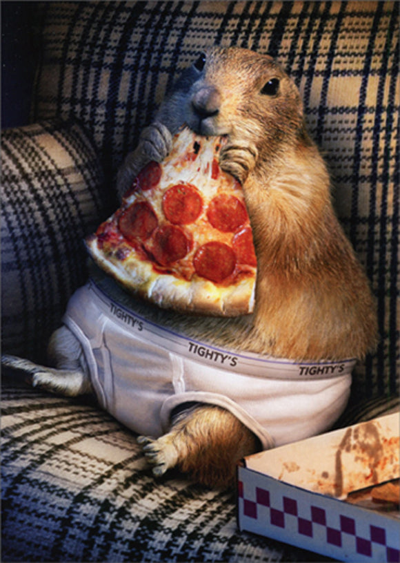 Avanti Press Prairie Dog in Underwear
