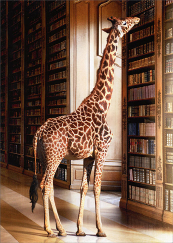 Avanti Press Giraffe at Library
