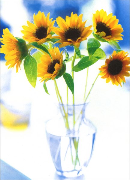 Avanti Press Small Sunflowers in Glass Vase Card